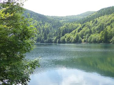 Visiter l'Alsace au coeur de la nature