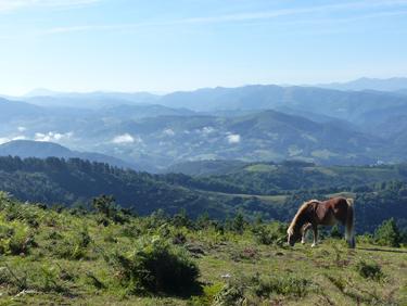 où partir dans les terres dans le Pays Basque