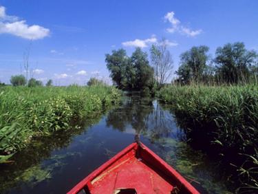 Visiter les marais de Saint-Omer