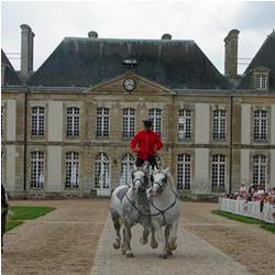 Visiter le haras du Pin en Normandie
