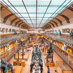 Visiter des musées à Paris