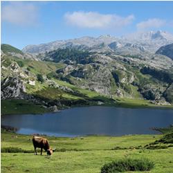 Partir dans les Pyrénées cet été