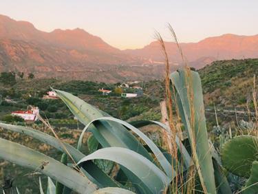 émoignage de membres : partir en randonnée dans les Canaries - échange de maison